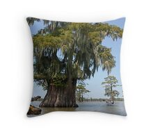 NA318-A Special Friend Is Waiting Throw Pillow