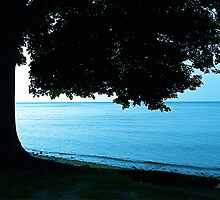 Serenity By The Great Lake by Nicole Weil T.