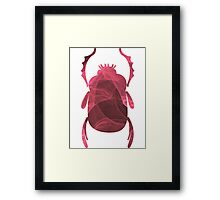 The Ever-Playful Mew | Egyptian Scarab Beetles  Framed Print