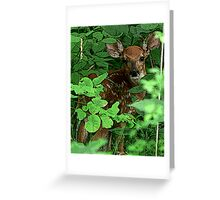 Posterized Fawn Greeting Card