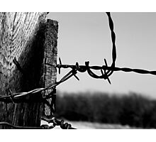 Barbed Fence Post Photographic Print