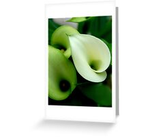 Tinted Green Greeting Card
