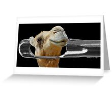 Camel Going Through the Eye of a Needle Greeting Card
