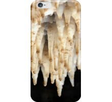 Dead Sea salt formation caused by the evaporation of the water iPhone Case/Skin