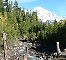 Mt. Rainier by twohunnyz