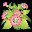 dog rose by VioDeSign