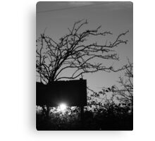 Thorny Sunset Canvas Print