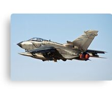 Italian Air force Eurofighter Typhoon in flight  Canvas Print