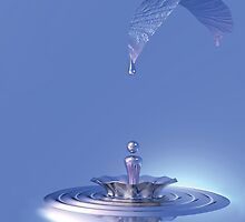Splash205 by Daniel Romero
