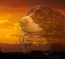 Tears In Heaven by Scott Ruhs
