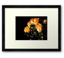 Peach Top Framed Print
