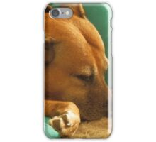 Cassie sleeping iPhone Case/Skin