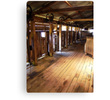 The Old Shearing Shed Canvas Print