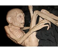 Voldemort has shrunk Photographic Print