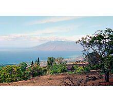 Ulupalakua Maui  Photographic Print