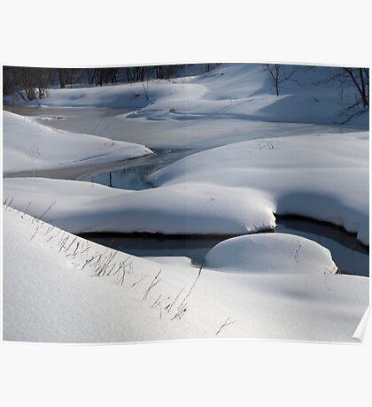 NC  Winter wonderland #2 Poster