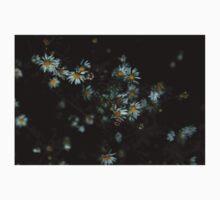 0133 - HDR Panorama - Daisies Kids Tee