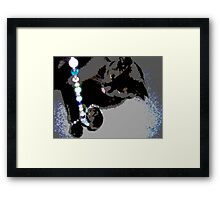 Jewel Theif Framed Print