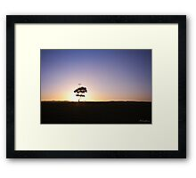 Lonely tree silhouette on open field at sunset  Framed Print