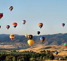 Balloons Over Colorado by Stevej46