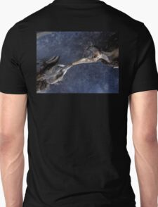 The death kiss of two birds T-Shirt