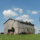 Yesterday's Barn by Sue Ellen Thompson