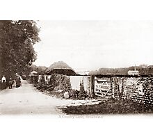 Hillbarn Lane, Broadwater, Worthing. Photographic Print