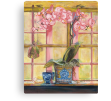 Elizabeth's Pink Orchid in a Sunny Window Canvas Print