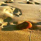Footprints by Larry149