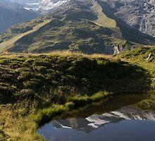 Alpine by Walter Quirtmair