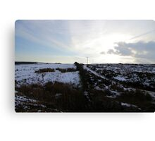 Stark Horizon Canvas Print