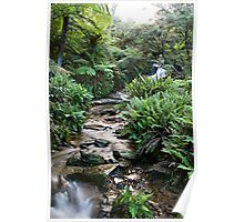 Leura Cascades in The Blue Montains Poster