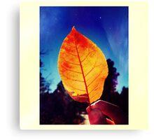 Summer Leaf Canvas Print