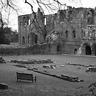 Furness Abbey by HelenRobinson