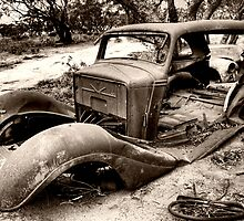 Fixed Or Repaired Daily (F.O.R.D) by Michael  Bermingham