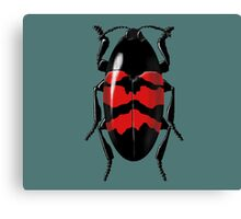some insect doing nothing Canvas Print