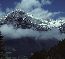In the Austrian Alps by bertspix