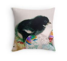black chick with eggs Throw Pillow