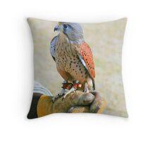Falconer Throw Pillow
