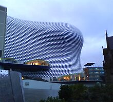 The Bullring by Kirsty Harper