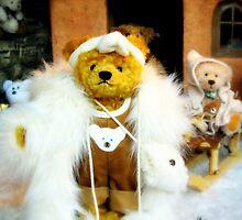 Glamour bear by MEV Photographs