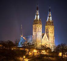 Vysehrad, Prague, Czech Republic by Petr Klapper