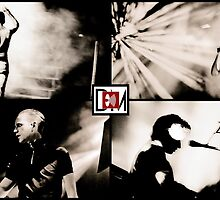Depeche Mode :  101 official photos by Luc Lambert