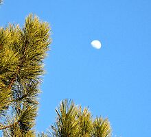 Moon in the Daytime by Lyndsay81