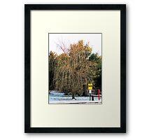 Dead Willow Framed Print