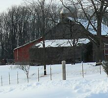"""Red and white  """"Barn"""" by Jellybean720"""