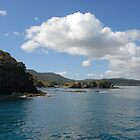 Scenic Bay of Islands by Michael Norris