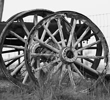 Wagon Wheels by Judson Joyce