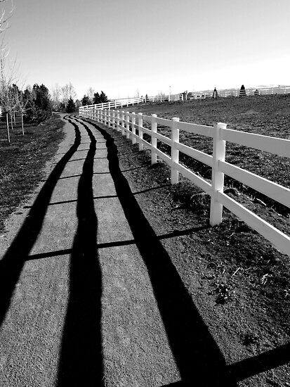 Fence Shadow by Jon  Johnson