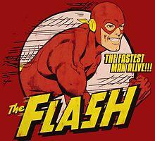 The Flash Retro by zamora